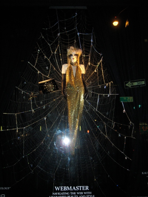 Lady in a Spider Web